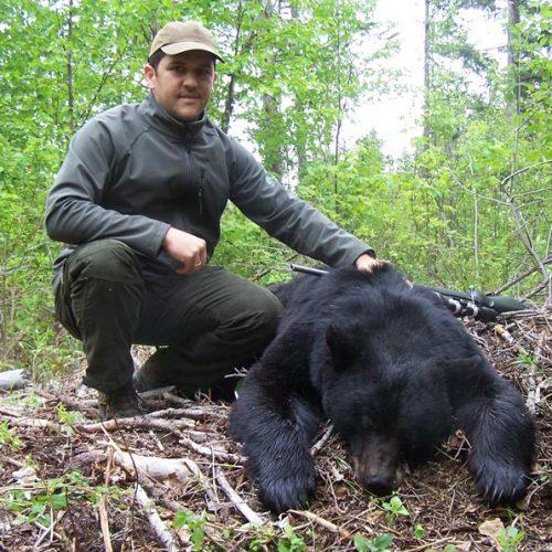 luis-black-bear
